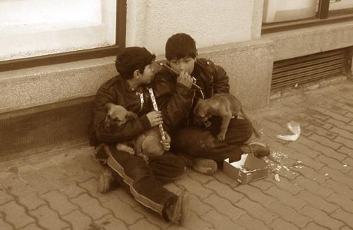 4 ian 2007 - Timisoara